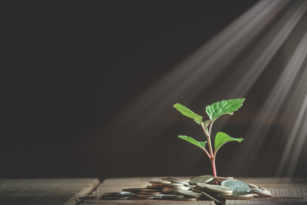Coins and plant growing through it. Concept of savings, interest, fixed deposits, pension, social security cheque.